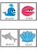 Ocean Picture Word Bank and Picture Cards