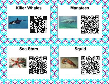 Ocean QR codes for Pebble Go