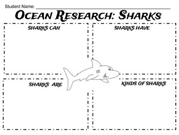 Ocean Research - Sharks