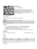 Ocean STEM  and STEAM webquest / experiment