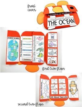 Ocean Science Interactive Activities