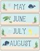 Ocean Theme - Classroom Decor - Calendar