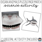 Ocean Theme Science Center Activity Puzzles – Visual Discrimination