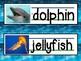 Ocean Theme Words