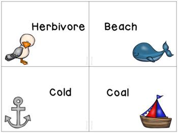 Ocean Themed Analogies