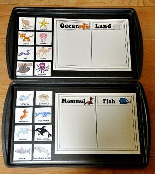 Ocean Cookie Sheet Activities