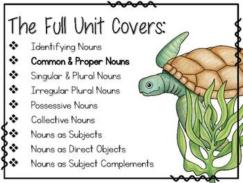 Ocean-Themed Nouns Unit - Common & Proper Nouns