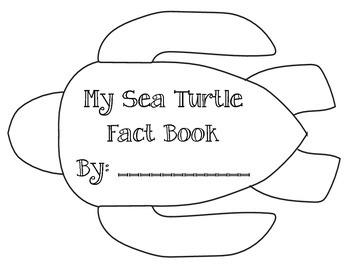 Ocean Unit: Sea Turtle Fact Book