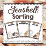 Ocean Unit Study: Seashell Sorting and Classification