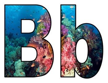Ocean View Bulletin Board Letters