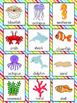 Ocean Vocabulary Cards