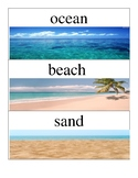 Ocean Vocabulary Cards
