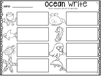 Ocean Vocabulary Cards and Activities