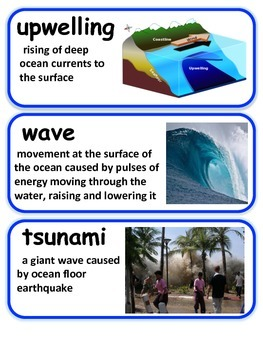Ocean Vocabulary with Definitions & Pictures
