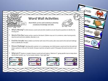 Ocean Theme Word Wall