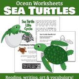 Ocean Worksheets: Sea Turtle Life Cycle & Habitat