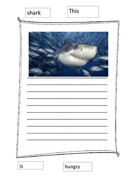 Ocean Writing Paper Wall