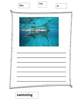 Ocean Writing Paper Wall