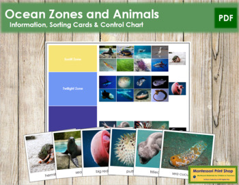 Ocean Zones: Animals