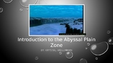 Ocean Zones: Introduction to the Abyssal Plain Zone
