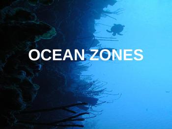 Ocean Zones PowerPoint