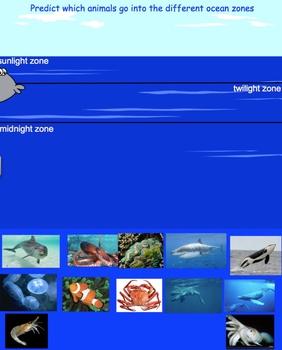 Ocean Zones Smartboard