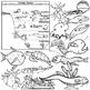 Ocean Zones and Creatures Clip Art Set - Oceanography