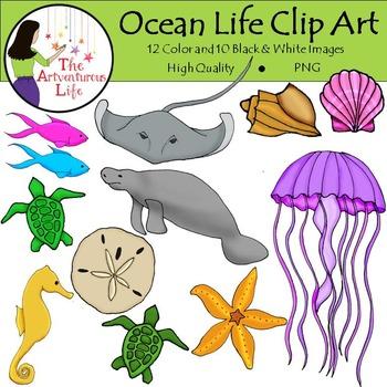 Ocean and Sea Life Clip Art