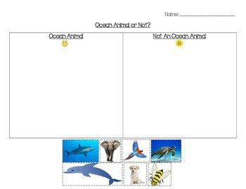 Ocean animal or not (freebie)