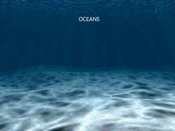 Ocean animal powerpoint