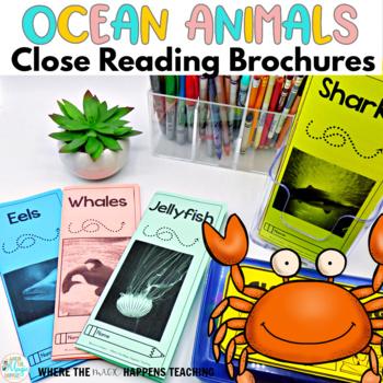 Ocean Animals Close Reading