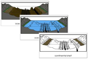 Oceanic Landforms Nomenclature Cards
