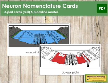 Oceanic Landforms Nomenclature Cards (Red)