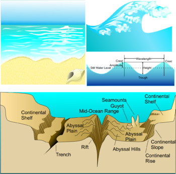 Oceanography Clip Art