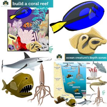 Oceanography Clip Art Bundle