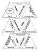 Oceanography Vocabulary Puzzle (Tarsia Triangle Puzzle)