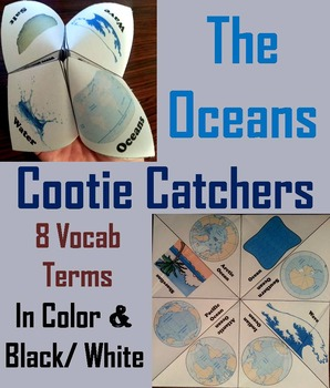 Oceans Unit Activity