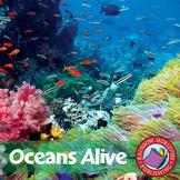 Oceans Alive Gr. 4-6