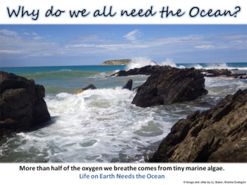 Oceans Education Poster  1