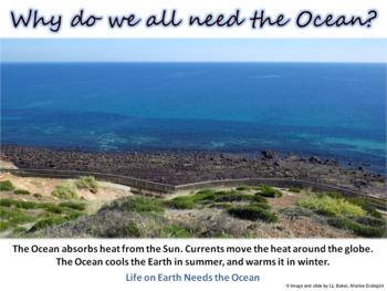 Oceans Education Poster 2