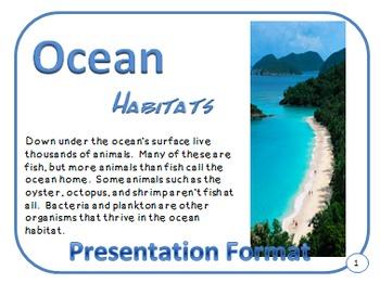 Oceans Habitat and Adaptations PDF Presentation