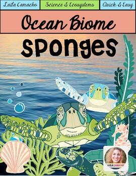 Ocean Animals Sponges