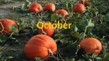 October Calendar & Daily Vocabulary