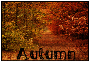 October Circle Time Activity Pack