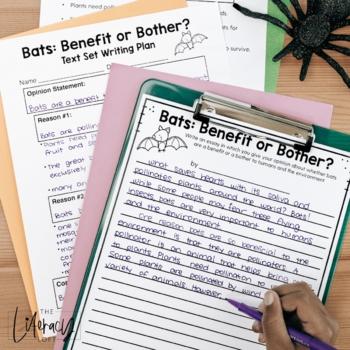 Opinion Text Set {Bats}