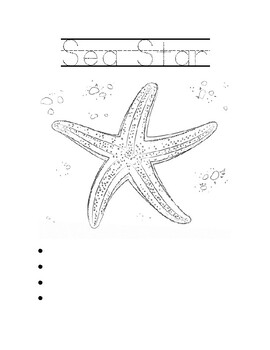 Octonauts S1 E15 Worksheets