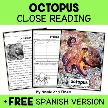 Octopus Close Reading Passage Activities