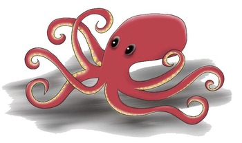 Octopus Smooth