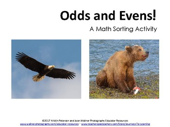 Odds and Evens: A Math Sorting Activity