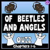 Of Beetles and Angels Quiz and Study Guide - Chapters 1 - 6
